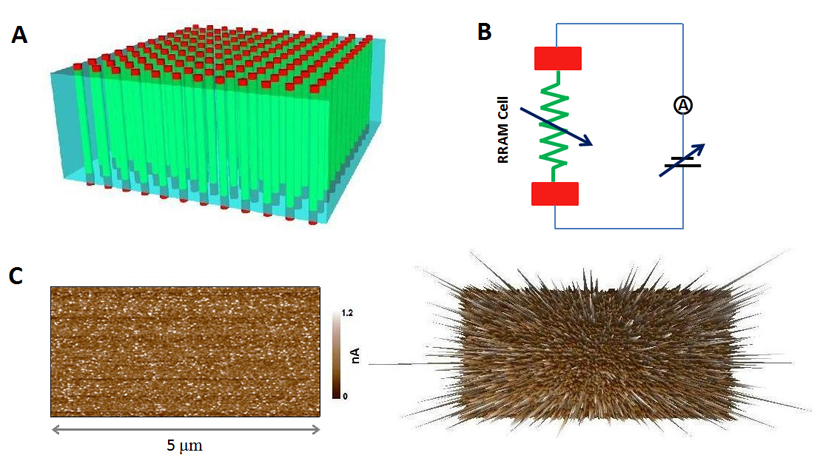 (A) An illustration of the RRAM array with each memory cell comprising of one filament (sandwiched between two electrodes). In comparison to the surrounding insulator matrix, a number of nano-filaments are formed within the bulk oxide. (B) A basic element of a RRAM cell. Control of the electrical field leads to different resistance states. (C) Localized formation of conductive filaments in a TiO2 thin film. The left shows the conductivity map recorded by CAFM. The right shows the same current mapping in 3D.