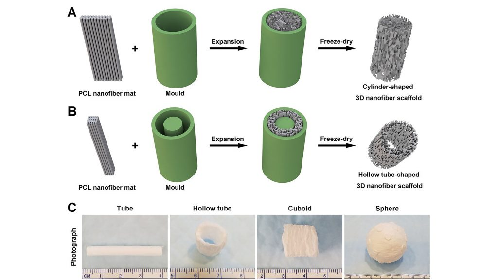 Schematic illustrating the procedure of converting a 2D nanofiber mat into a cylinder-shaped nanofiber scaffold with (a) a hollow tube-shaped mold for a cylindrical shape and (b) a customized scaffold for a tube shape. The photographs (c) represent the different scaffold that can be created with different mold shapes. CREDIT: Jingwei Xie