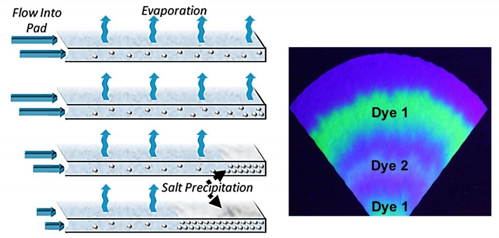 "The evaporation of sweat on paper pads could be used for fluid transport in wearables over long periods of time. The resulting dry layer of caked salts would preserve a ""time-stamped"" record of biomarkers of interest. CREDIT: Orlin D. Velev and co-authors, NC State University"