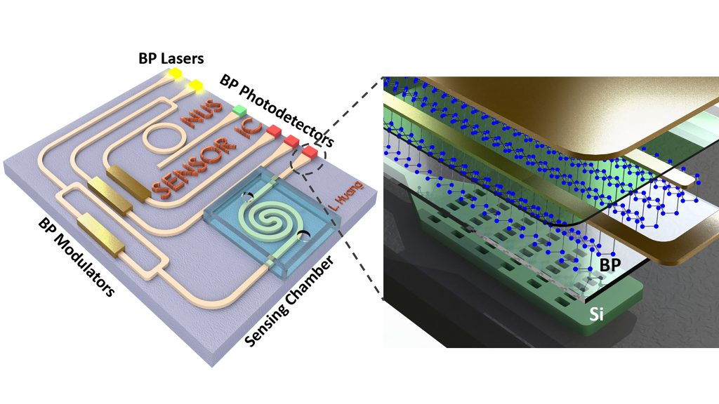 Schematics of an on-chip mid-infrared system based on black phosphorus-silicon hybrid platform. The passive silicon photonic layer serves to guide the mid-infrared light while black phosphorus plays an active role in light emission, modulation and detection. CREDIT: Bowei Dong and Li Huang