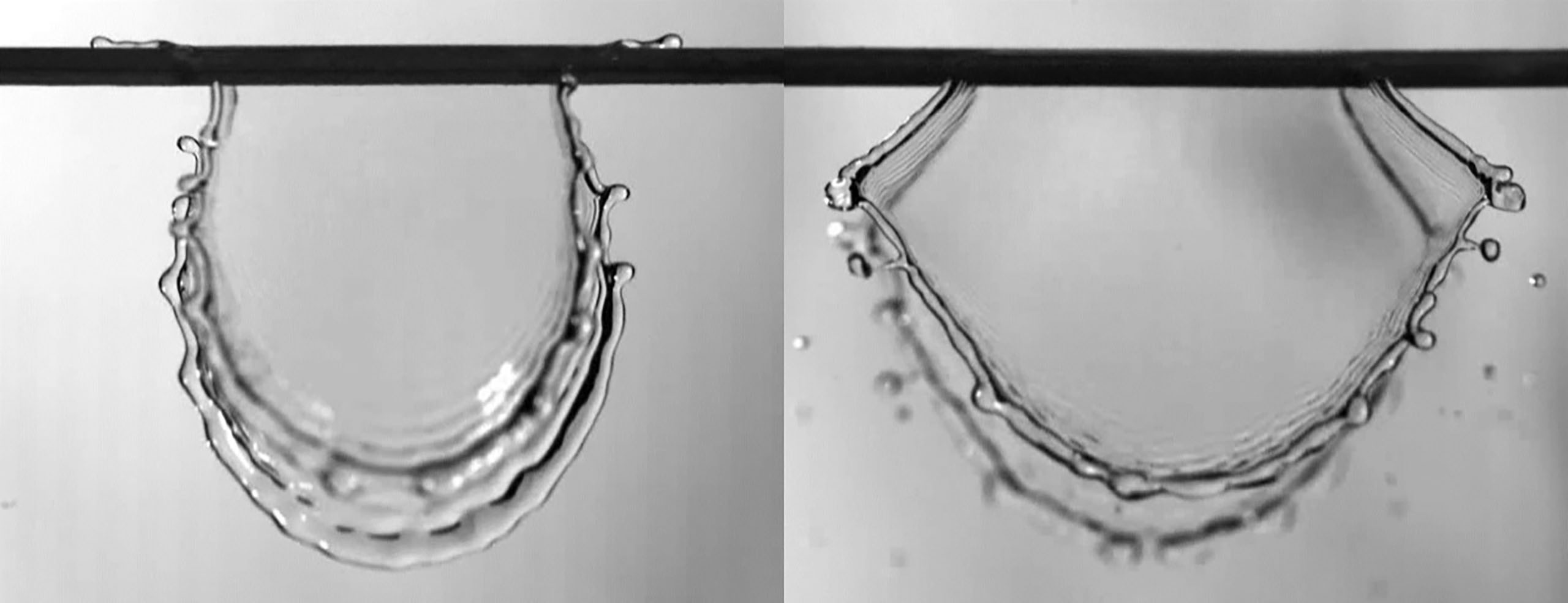 Lobes from 4 meters/second impacting rounded fibers (left) and wedged fibers (right). CREDIT: Lebanoff and Dickerson, UCF
