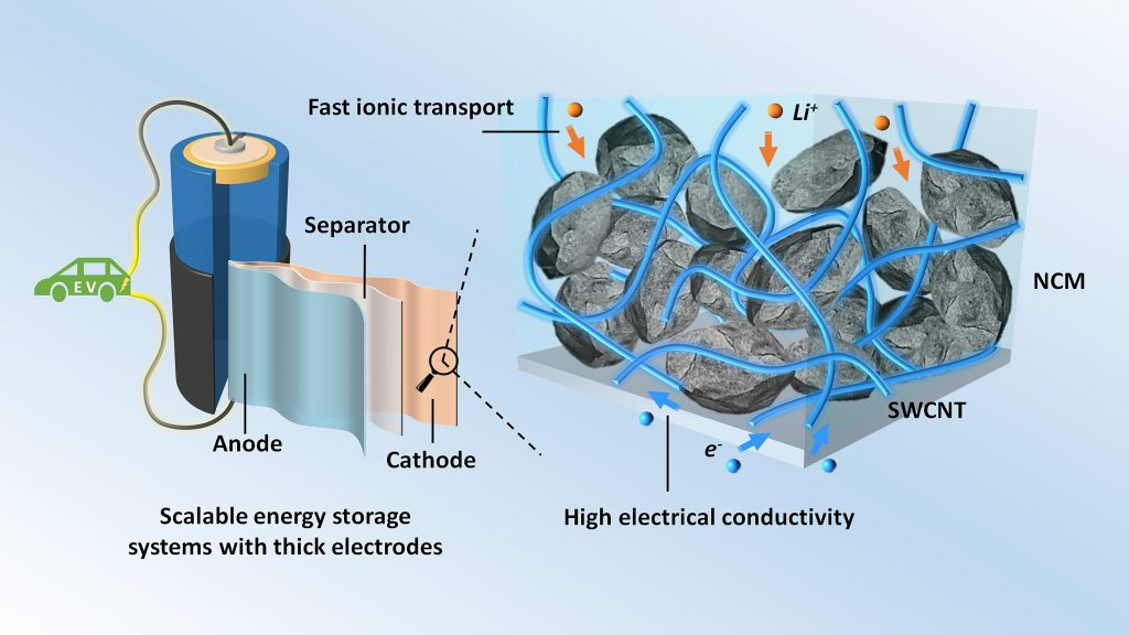 Thick electrodes with single-walled carbon nanotubes (SWCNTs) for scalable energy storage systems CREDIT: Zhengyu Ju and Guihua Yu