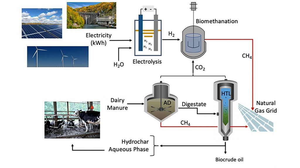 An integrated biorefinery approach utilizing agriculture waste biomass to produce renewable biomethane along with other co-products (for soil amendment, nutrient recovery, and transportation biofuels). CREDIT: Nazih Kassem, with images from Cornell University, Department of Energy