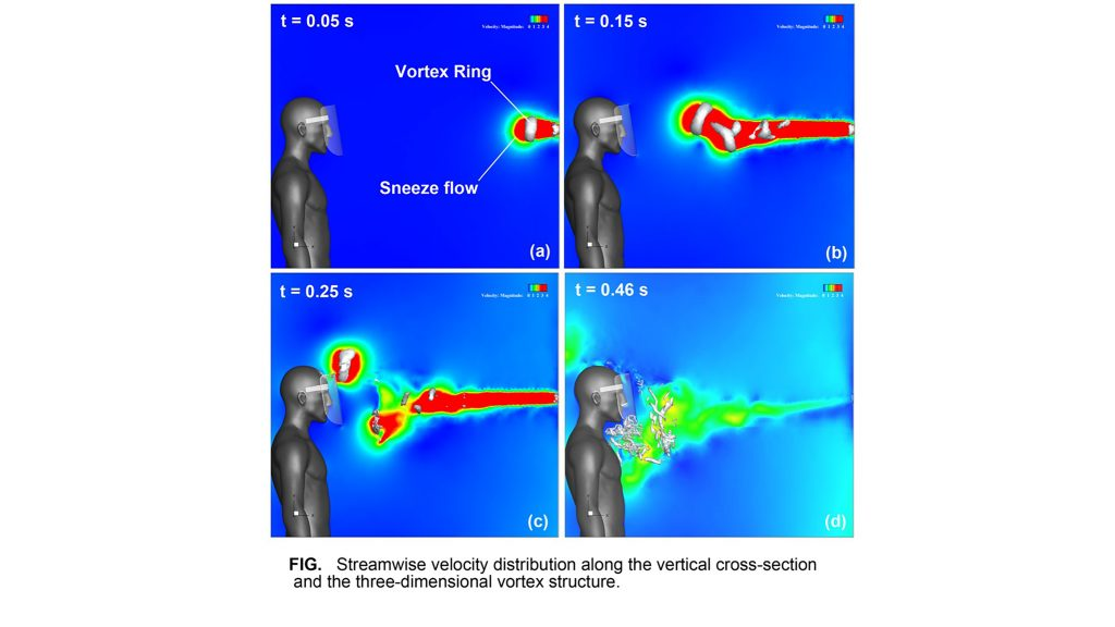 Sneeze vortex: Streamwise velocity distribution along the vertical cross section and the three-dimensional vortex structure. CREDIT: Fujio Akagi, Isao Haraga, Shin-ichi Inage and Kozaburo Akiyoshi