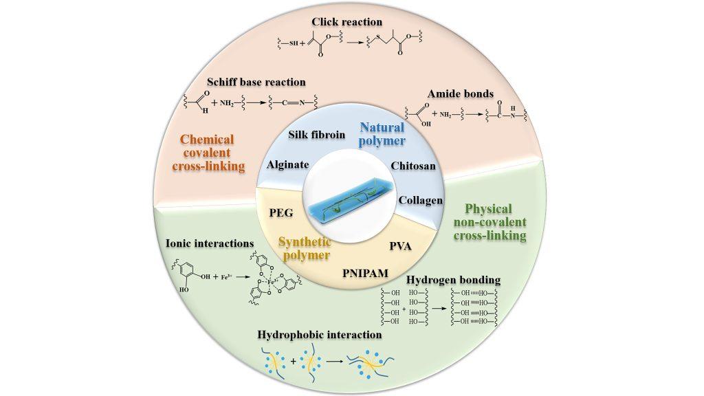 Crosslinking mechanisms and raw materials for various hydrogel wound dressings. CREDIT: Zheng Pan, Huijun Ye, and Decheng Wu