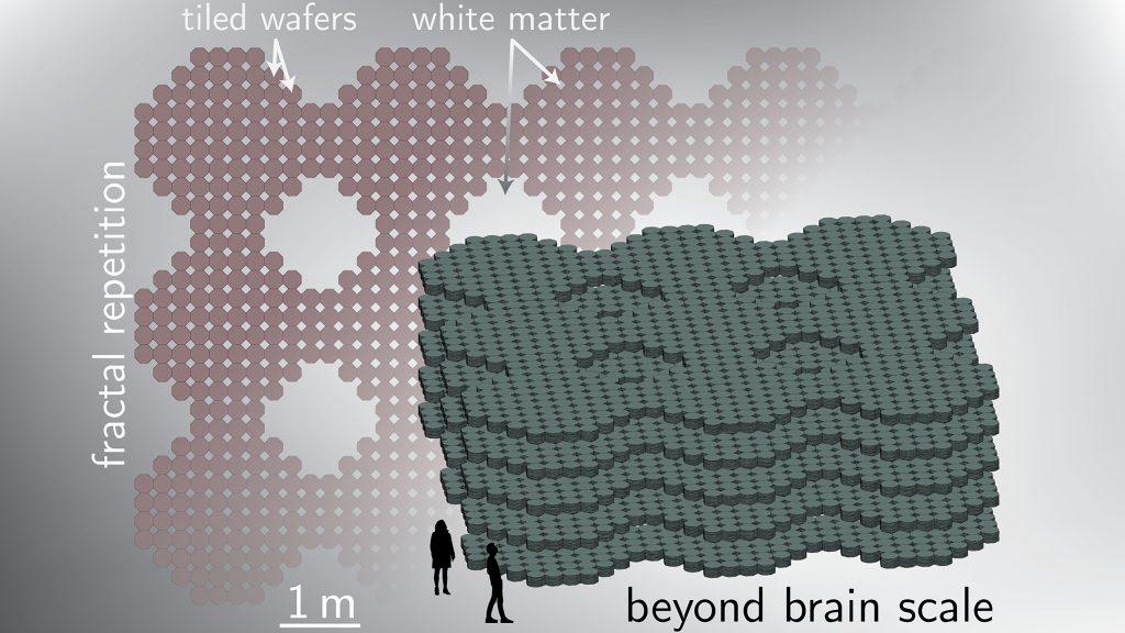 Spatial hierarchy. CREDIT: Jeffrey Michael Shainline