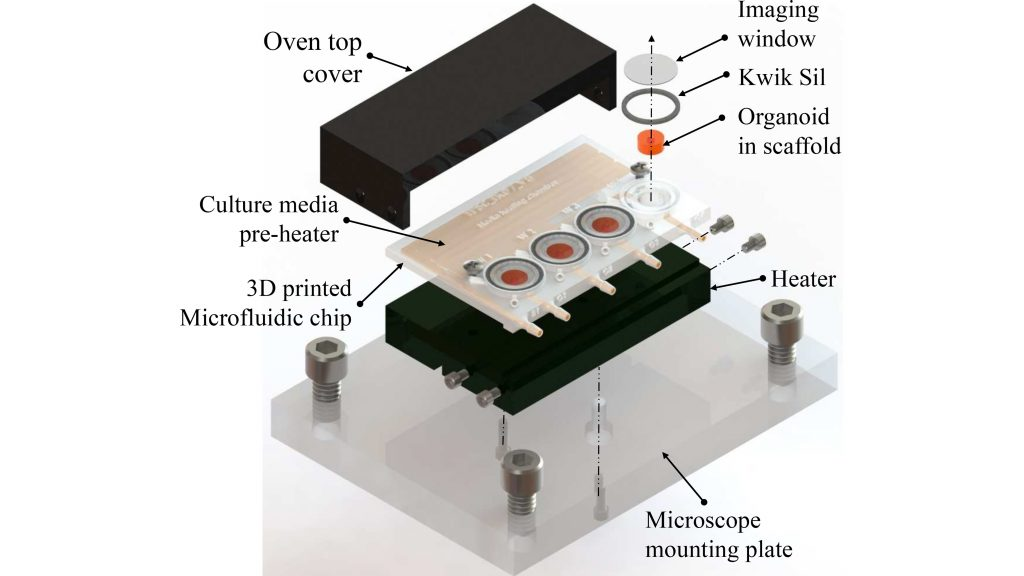 A 3D-printed microfluidic bioreactor for organ-on-chip cell culture CREDIT: Ikram Khan