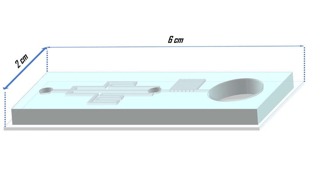 Schematic of the designed and fabricated microfluidic platform for gradual cryoprotectant loading in the embryo vitrification process. CREDIT: Pouria Tirgar, Fatemah Sarmadi, Mojgan Najafi, Parinaz Kazemi, Sina AzizMohseni, Samaneh Fayazi, Ghazaleh Zandi, Nikta Ziaie, Aida Shoushtari Zadeh Naseri, Allen Ehrlicher, and Mojtaba Dashtizad